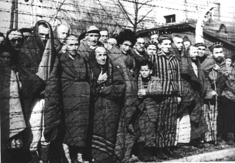 auschwitz-concentration-camp-prisoners-after-liberation-liberation-chronicle-1945