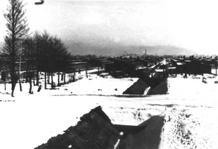 auschwitz-ii-birkenau-concentration-camp-in-the-background-sector-bii-d-ss-photograph
