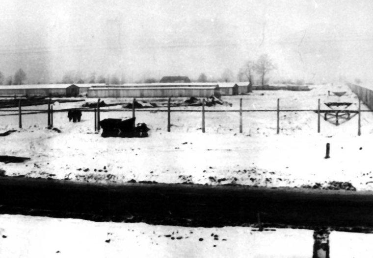 auschwitz-ii-birkenau-concentration-camp-sector-biii-ss-photograph