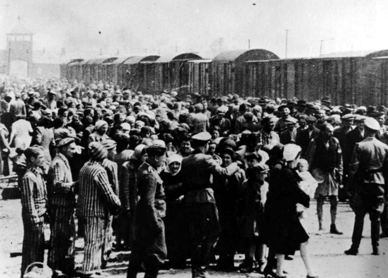 auschwitz-ii-birkenau-concentration-camp-selection-of-an-arriving-transport-of-jews-from-hungary