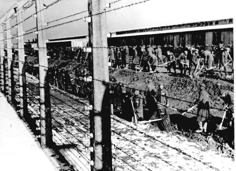 auschwitz-ii-birkenau-prisoners-laboring-ss-photograph