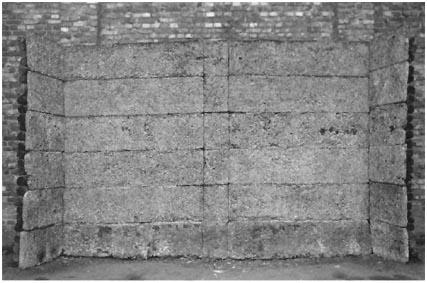 jurgen-kahlert-harald-nadolny_i-muro-delle-fucilazioni_vicino