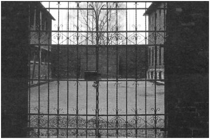 jurgen-kahlert-harald-nadolny_muro-delle-fucilazioni