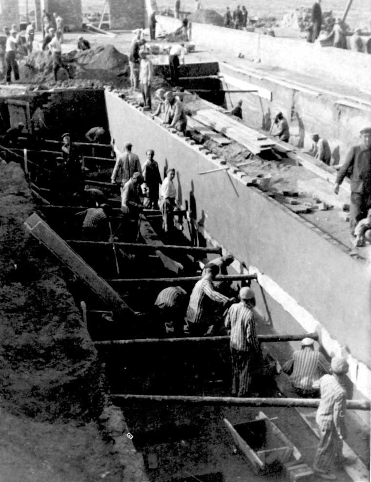 kl-auschwitz-ii-birkenau-prisoners-laboring-ss-photograph-1943